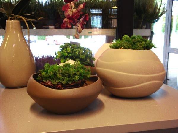 Pflanzen kaufen bei gartenbau wurm in freystadt for Pflanzen terrasse